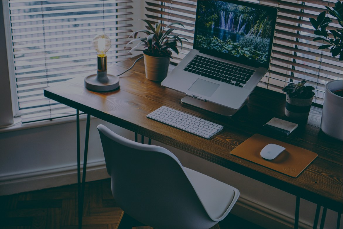 Diese 10 Büropflanzen steigern deine Produktivität