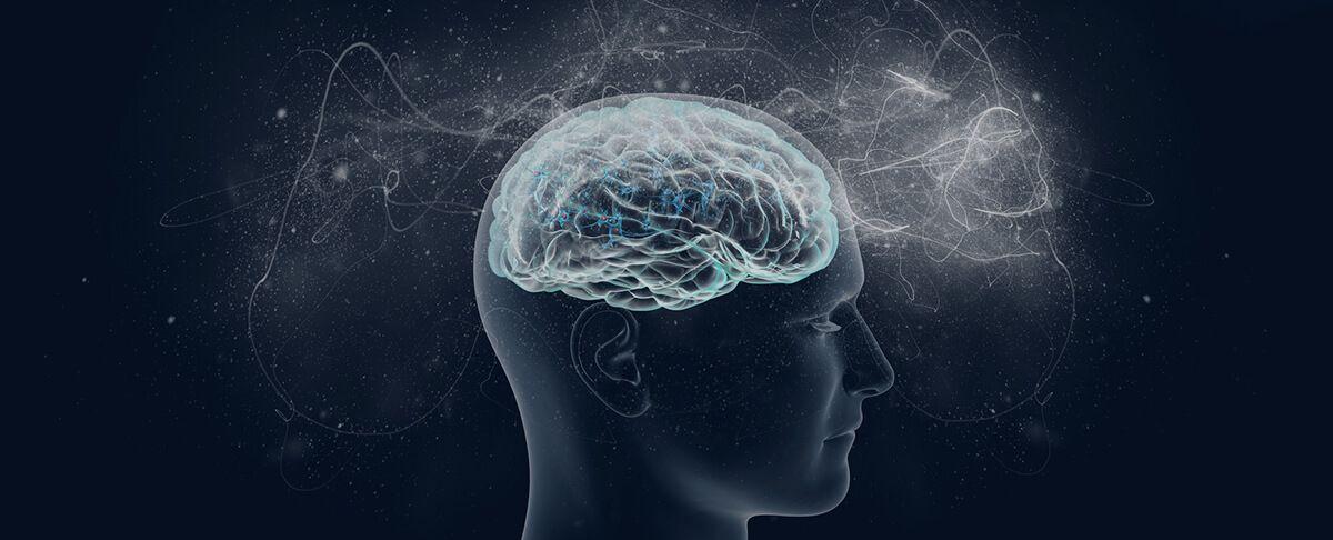 BDNF - Booste dein Gehirn mit dem Wachstumsfaktor