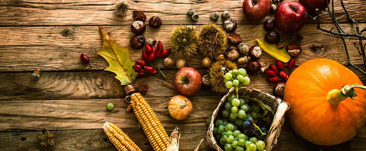 6 Superfoods für den Herbst