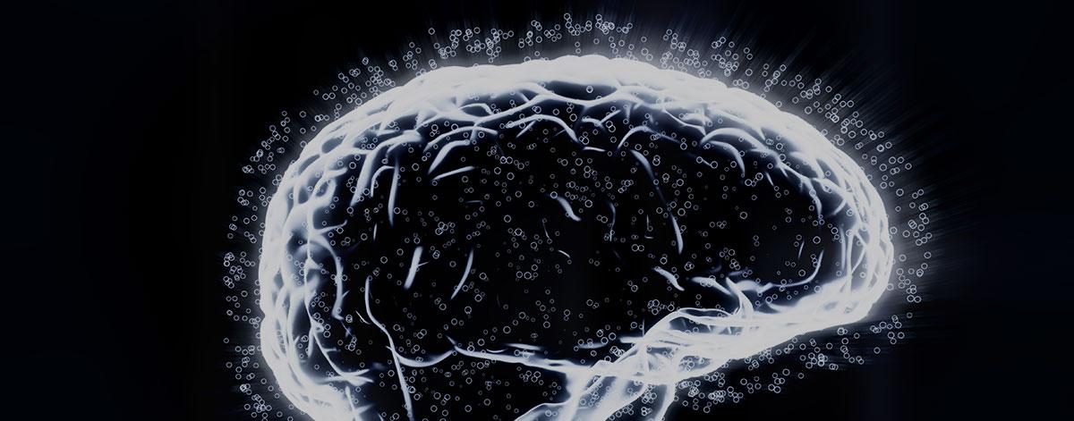 8 Gehirnfakten, die gerne verdreht werden