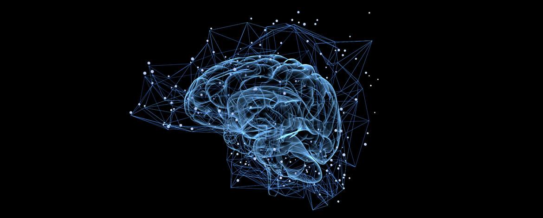 Brainfood - Die absolute Power für dein Gehirn