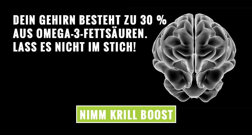 Dein Gehirn besteht zu 30 % aus Omega-3-Fettsäuren