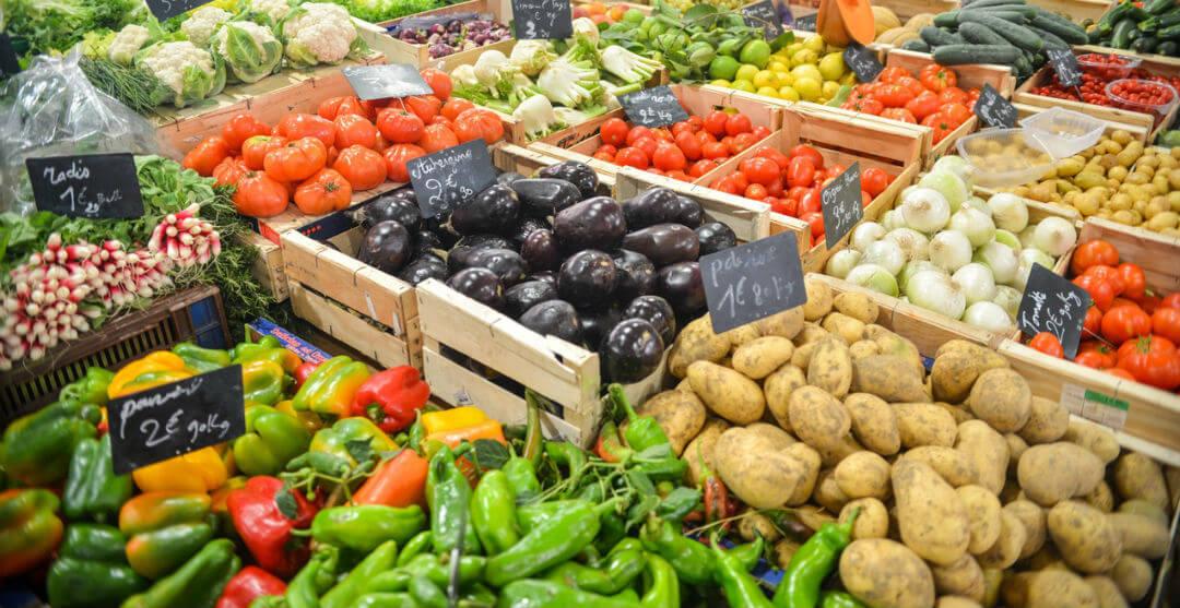 Vitamin and Minerals Food Vegetables Supplementation BrainEffect