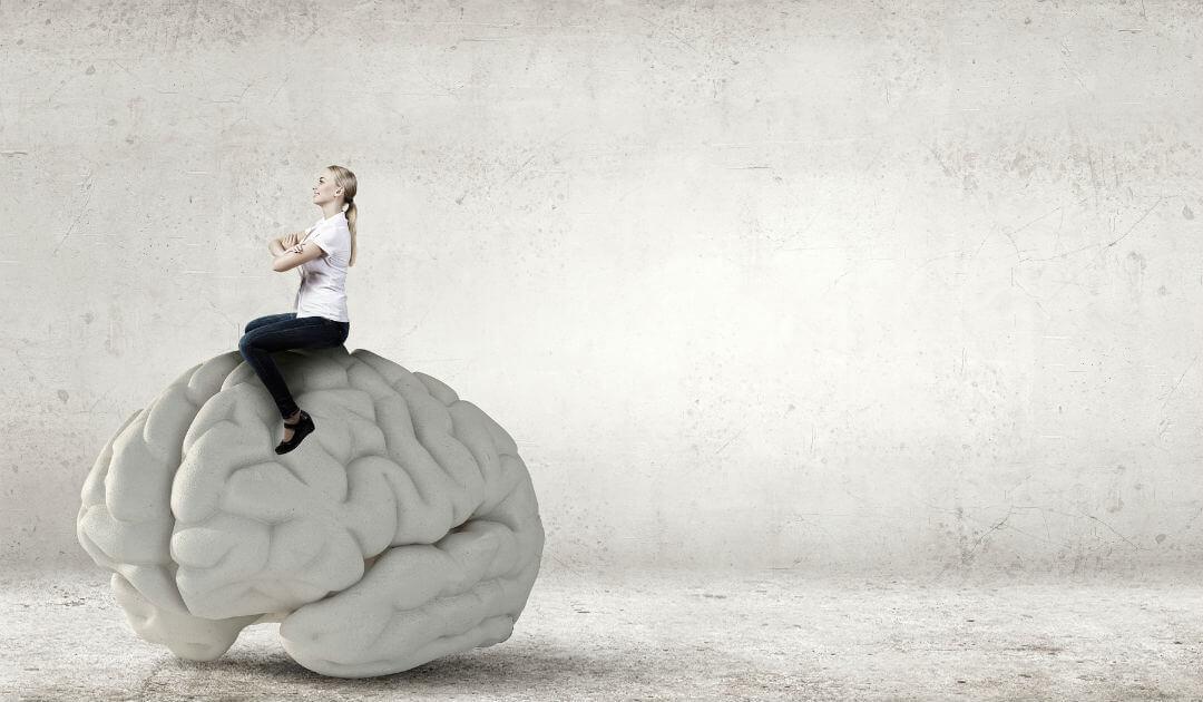 Das_menschliche_Gehirn