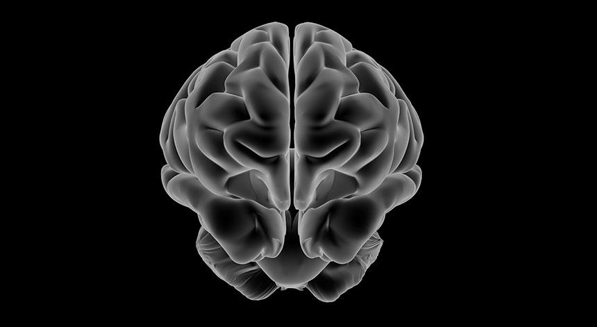 Vitamin B12 Gehirn