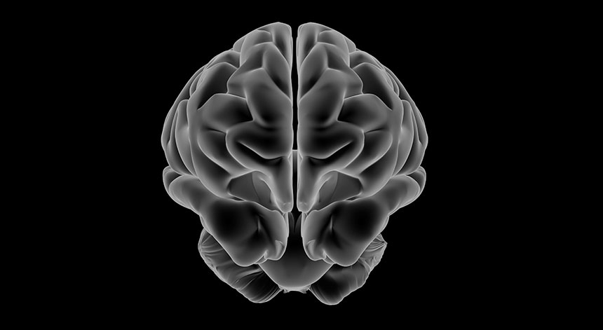 Cerveau avec vitamine B12