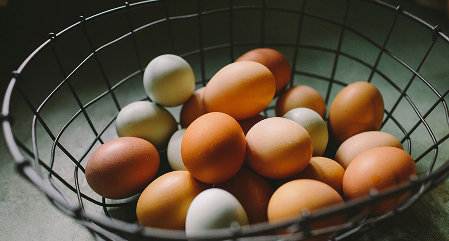 Panier avec oeufs riches en vitamine B12